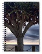 Encinitas Sunset Spiral Notebook
