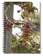 End Of Season Grapes Spiral Notebook