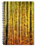 Energy Of The Forest Autumn Color Spiral Notebook
