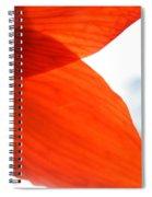 Enfolding In Orange Spiral Notebook