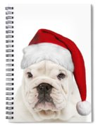 English Bulldog In Christmas Hat Spiral Notebook