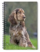 English Cocker Spaniel Dog Spiral Notebook