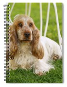 English Cocker Spaniel Spiral Notebook