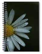 English Daisy And Rain Drops Spiral Notebook
