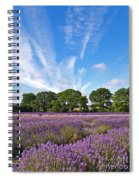 English Lavender Fields In Hampshire Spiral Notebook