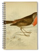 English Robin Spiral Notebook
