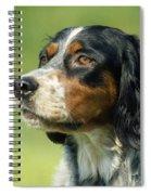 English Setter Dog Spiral Notebook
