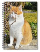 Enjoing The Sunshine Spiral Notebook
