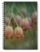 Enkianthus Bells Spiral Notebook