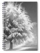 Enlightened Tree Spiral Notebook