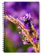 Entangled Spiral Notebook