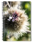 Equilibrium  Spiral Notebook