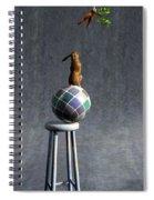 Equilibrium II Spiral Notebook