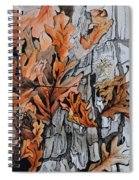 Eruption I Spiral Notebook