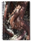 Escaping The Crocodile Spiral Notebook