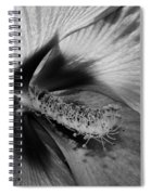 Essence Black And White Spiral Notebook