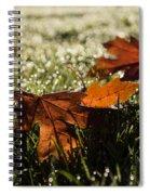 Essence Of Autumn Spiral Notebook