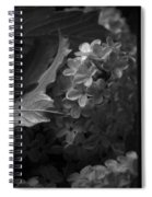 Essence Of My Soul In Black And White Spiral Notebook