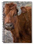E.t. Highway Bull Spiral Notebook