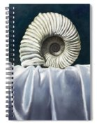 Eternal Spiral Notebook