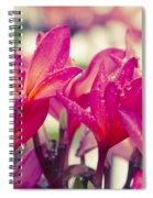 Eternal Spring Spiral Notebook