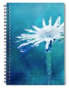Eternal - Textured Spiral Notebook