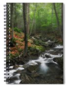 Ethereal Forest Spiral Notebook