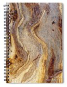 Eucalyptus Bark Spiral Notebook