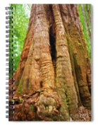 Eucalyptus Tree Tasmania Spiral Notebook