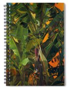 Eugene And Evans' Banana Tree Spiral Notebook