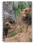 Eurasian Brown Bear 17 Spiral Notebook