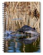 Eurasian Coot Runtime Spiral Notebook