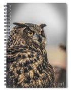 Eurasian Eagle Owl Spiral Notebook