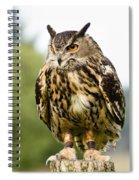 Eurasian Eagle Owl On Log Spiral Notebook