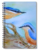 Eurasian Nuthatch Spiral Notebook