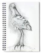 Eurasian Spoonbill - Platalealeucorodia Spiral Notebook