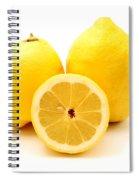 Eureka Lemons Spiral Notebook