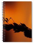 European Devil Mantis Spiral Notebook