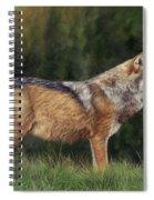 European Grey Wolf Spiral Notebook