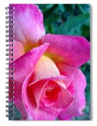 Evening Bloom Spiral Notebook