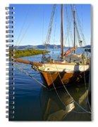 Evening Calm In Coromandel Spiral Notebook