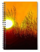 Evening Dunes Spiral Notebook