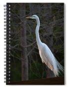 Evening Egret 2 Vertical Spiral Notebook