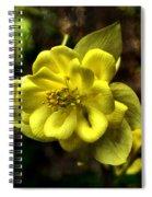 Evening Floral Spiral Notebook