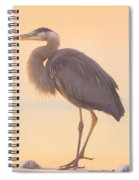 Evening Heron - Colorful Pastel Spiral Notebook