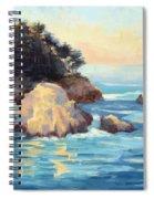 Evening Light Point Lobos Spiral Notebook