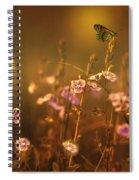 Evening Magic Spiral Notebook