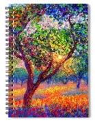 Evening Poppies Spiral Notebook