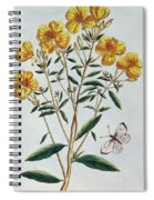 Evening Primrose Spiral Notebook
