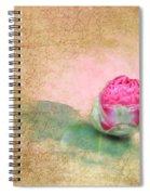 Evening Rosebud Spiral Notebook